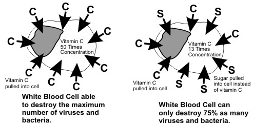 Glucose and Vitamin C similarities
