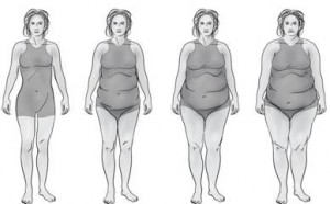 Thyroid Body Type Progression