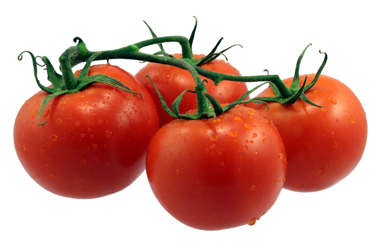 Tomato_03