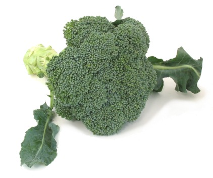 inflorescentvegetables-broccoli