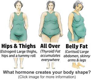 Female body shapes from hormone imbalances